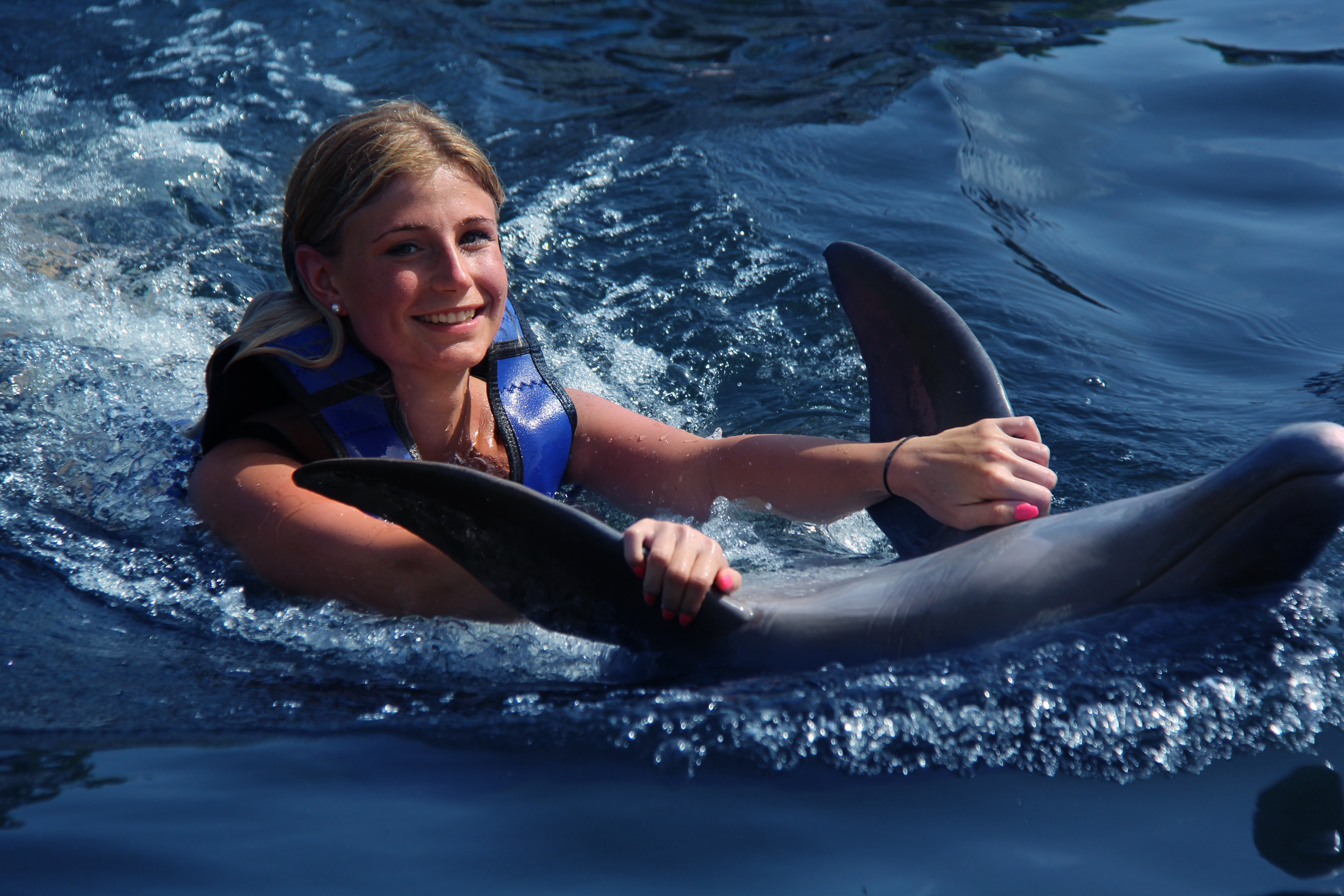 You Absolutely Need To Try These Amazing Dolphin Encounters
